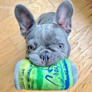 LickCroix Lickety Lime Barkling Water Dog …